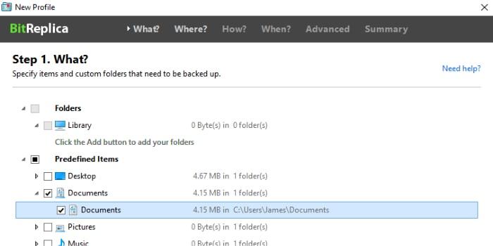 bitreplica select files for backup