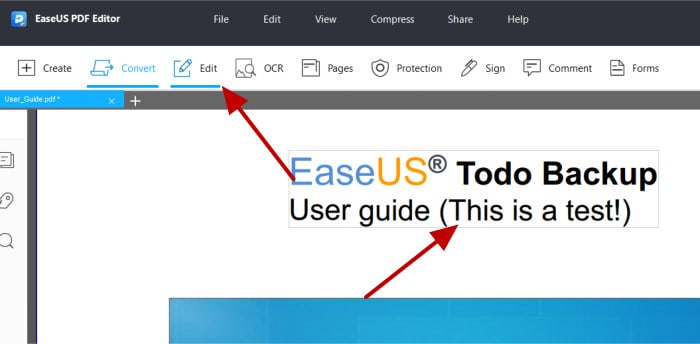 easeus pdf editor - pdf being edited