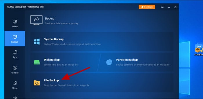 backupper file level backup choice
